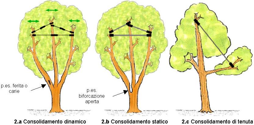 consolidamento2